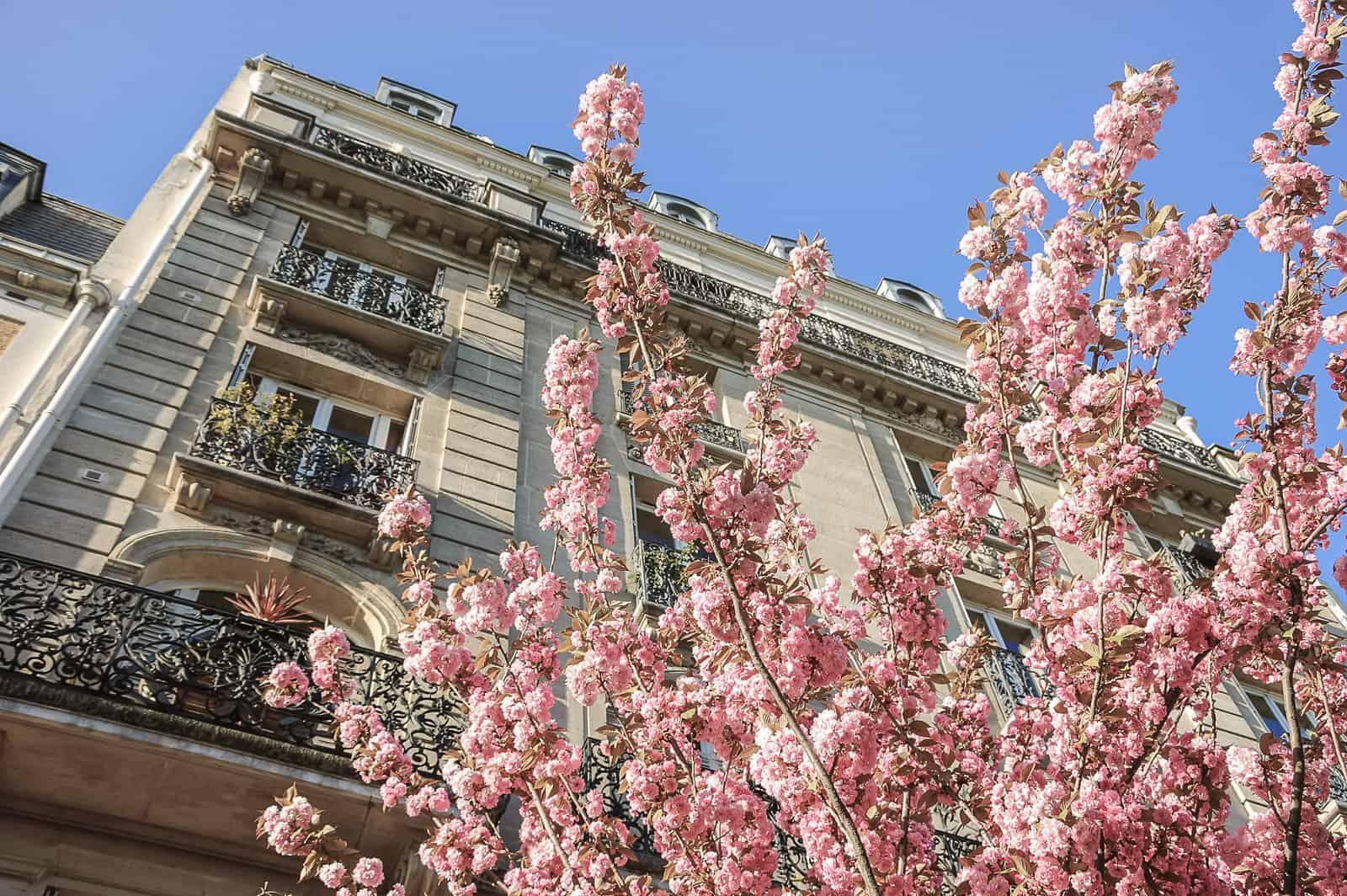Devis Obsèques en Ligne ( Paris, Île-de-France et l'Oise), Révérence Funéraire | Services Funéraires Premium au juste prix